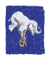 Elephant Balance Fine-Art Print