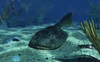A Drepanaspis on the bottom of a shallow Devonian sea Fine-Art Print