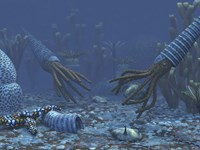 Squid-like Orthoceratites attempt to make meals of trilobites Fine-Art Print