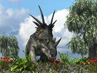 A Styracosaurus samples flowers of the order Ericales Fine-Art Print