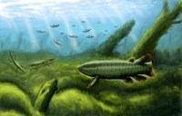 Holoptychius, Tulerpeton and Moythomasia, prehistoric fish of the Devonian period Fine-Art Print