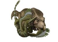 A Velociraptor attacks a Protoceratops Fine-Art Print