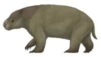 Diprotodon, the Largest know Marsupial Fine-Art Print