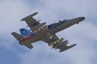 Czech Air Force Aero L-159T Advanced Light Combat Aircraft Fine-Art Print