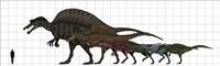 Spinosauridae Size chart Fine-Art Print