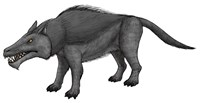 Andrewsarchus, an Ungulate Mammal from the Eocene Epoch Fine-Art Print