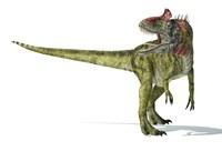 Cryolophosaurus Dinosaur Fine-Art Print