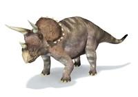 3D Rendering of a Triceratops Dinosaur Fine-Art Print