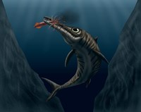 An Ophthalmosaurus Catches a Squid in the Deep Sea Fine-Art Print