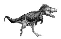 Black Ink Drawing of Albertosaurus Sarcophagus Fine-Art Print
