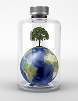 Planet Earth with a Tree on Top, inside a Glass Bottle Fine-Art Print