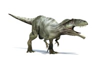 3D Rendering of a Giganotosaurus Dinosaur Fine-Art Print