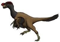 Citipati, an Oviraptorid from the Cretaceous Period Fine-Art Print