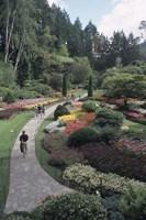 Sunken Garden at Butchart Gardens, Vancouver Island, British Columbia, Canada Fine-Art Print