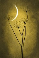 Yellow Crescent Moon Fine-Art Print