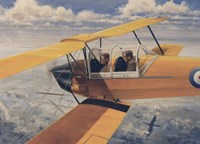 De Havilland DH82 Tiger Moth basic Trainer Biplane from the 1930's Fine-Art Print