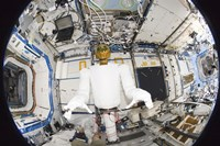 A Humanoid Robot in the Destiny Laboratory of the International Space Station Fine-Art Print
