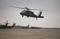 A UH-60 Black Hawk Taking off for a Mission Over Northern Iraq Fine-Art Print
