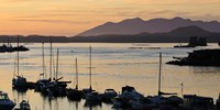 Sunset at Tofino, Harbor, Vancouver Island, British Columbia Fine-Art Print