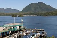 Harbor, Meares Island, Vancouver Island, British Columbia Fine-Art Print