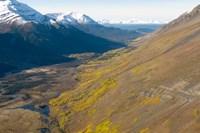 Todagin South Slope Provincial Park, British Columbia Fine-Art Print