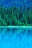 Emerald Lake Boathouse, Yoho National Park, British Columbia, Canada (vertical) Fine-Art Print