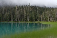 Blue glacial lake, evergreen forest, British Columbia Fine-Art Print