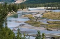 Rivers in Jasper National Park, Canada Fine-Art Print