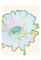 Pop Daisy Fine-Art Print