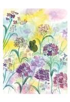 Wildflower Meadow Fine-Art Print