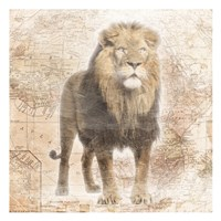 African  Animals - Lion Fine-Art Print