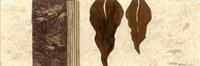 Panatella II Fine-Art Print