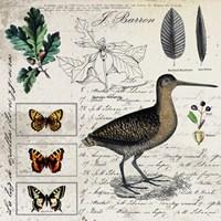 Botanical Bird Fine-Art Print