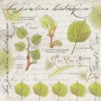 Botanical Jardins Fine-Art Print