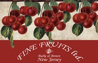 Cherries III Fine-Art Print