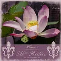 Lotus Bloom Fine-Art Print