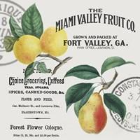 Vintage Fruit Fine-Art Print