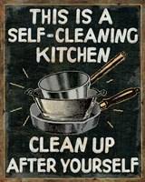 Self Cleaning Kitchen Fine-Art Print