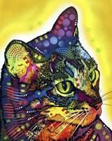 Confident Cat Fine-Art Print