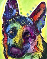 German Shepherd 1 Fine-Art Print