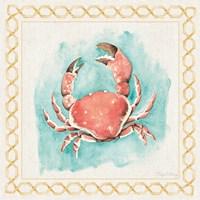 Coastal Mist Crab Border Turquoise Fine-Art Print