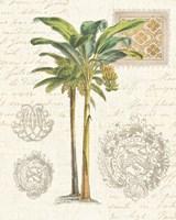 Vintage Palm Study I Fine-Art Print