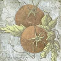 Buon Appetito Tomatoes Fine-Art Print
