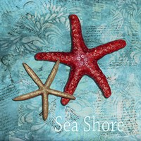 Sea Shore Fine-Art Print