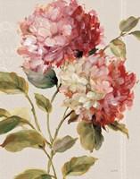 Harmonious Hydrangeas Linen Fine-Art Print