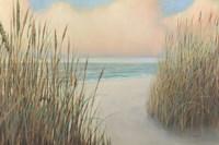Beach Trail I Fine-Art Print