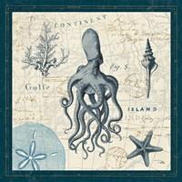 Ocean Life VII Fine-Art Print