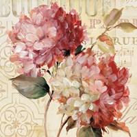 Harmonious V v.2 Fine-Art Print