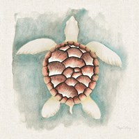 Coastal Mist Sea Turtle Fine-Art Print