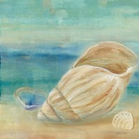 Horizon Shells II Fine-Art Print
